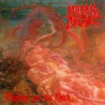 """Morbid Angel """"Blessed Are The Sick"""" Gatefold Colored Vinyl"""