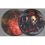 """Morbid Angel """"Blessed Are The Sick"""" Vinyl Picture Disk"""