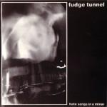 """Fudge Tunnel """"Hate Songs In E Minor"""" CD"""