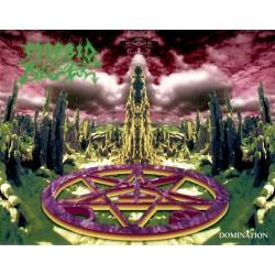 "Morbid Angel ""Domination"" Digipak CD w/ Album Artwork Poster"